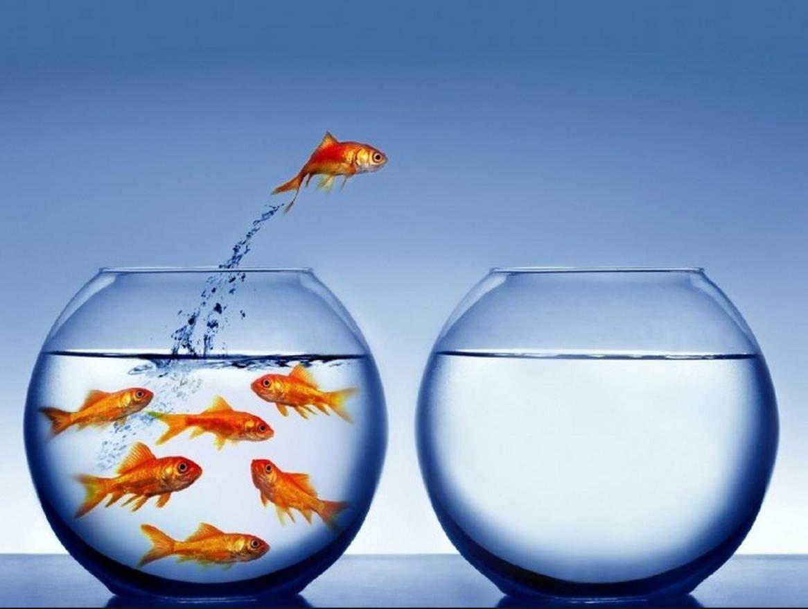 Paradigmas que os gerentes de projetos devem quebrar na adoção do mindset agile.